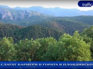 Край на разходките! Слагат бариери в гората на 30 км от Пловдив (Обзор на деня)