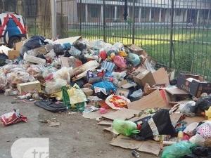 Купища боклуци край оградите на пловдивско училище и забавачка СНИМКИ