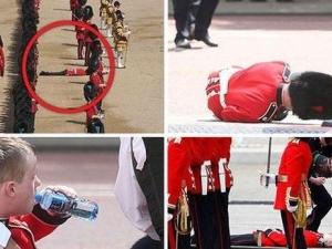 Жега в Лондон: петима гвардейци на кралицата припаднаха по време на парад