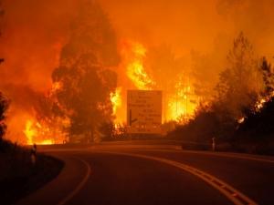 Няма пострадали българи в Португалия, над 57 загинаха в пожара