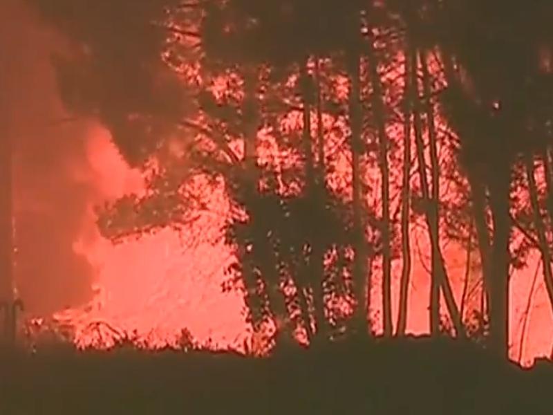 Обявиха тридневен траур в Португалия заради жертвите на пожара