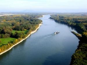 Обществена поръчка предвижда 1 млн. лв за броене на комарите по Дунава