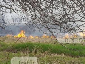 Започнаха горските пожари  - изгасиха 49 само за 24 часа