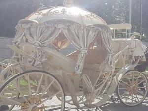 Наши роми втрещиха полска болница с оркестър и златна карета