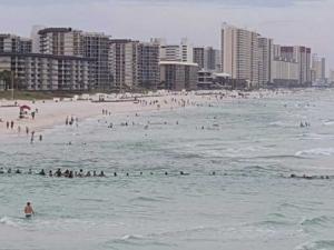 Спасиха с жива верига давещи се във Флорида СНИМКА И ВИДЕО