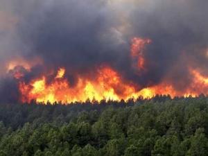 Гореща вълна и пожари заляха Европа