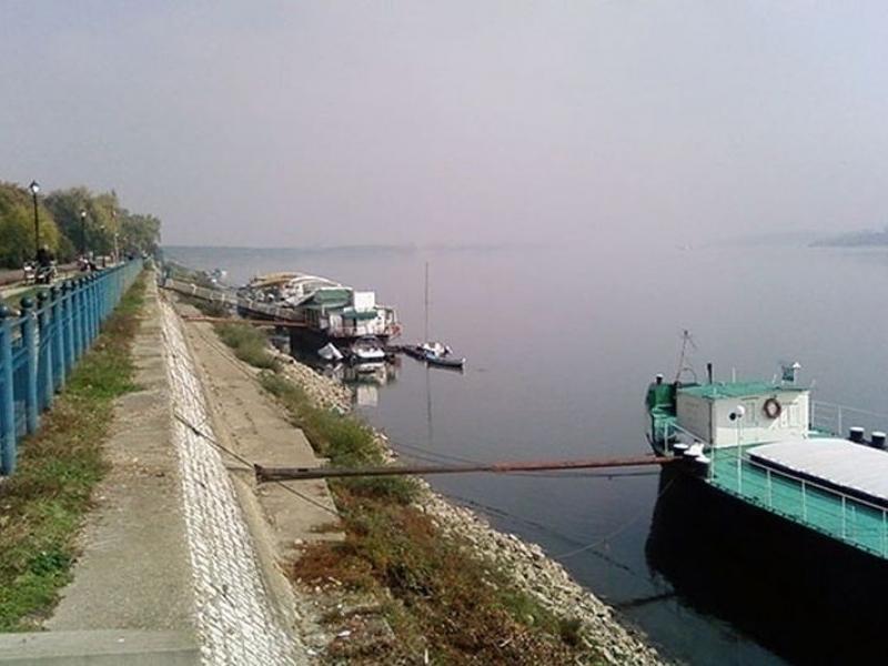 Бракониери пържат рибата в Дунав, ловят я с ток