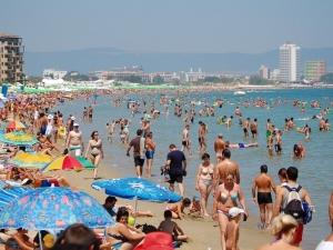 Нови вируси плъзнаха по Черноморието