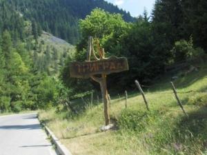 Гъбари видели в гората 16-годишния Кристиян?