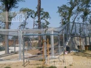 Иван Тотев:  Зоологическата градина със сигурност ще отвори до 2019 година