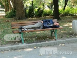 Бездомни хора, бездомни кучета, пияници, бълхи и деца - от всичко има в парковете на Пловдив СНИМКИ