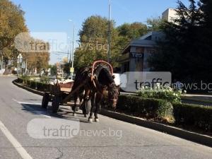 85-годишен каруцар бере душа, след като бе блъснат от микробус в Пловдивско