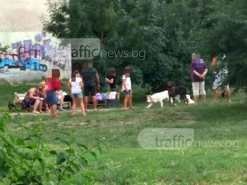 "Собственици на кучета завладяха площадка в ""Гагарин"" СНИМКИ"