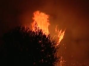 Летци от базата край Пловдив борят чудовищен пожар в Македония ВИДЕО