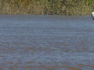 """Трагедия на """"руския плаж"""": млада жена се удави"""
