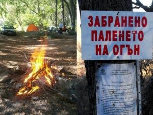 Не палете огън в гората! Глобата е до 1000 лева