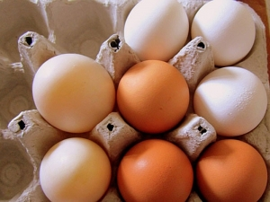 Откриха замърсени с фипронил яйца и в съседна Румъния