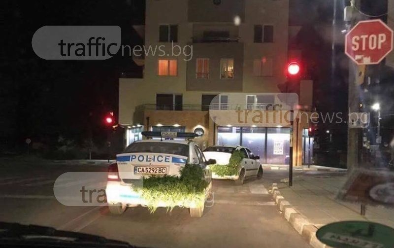 Уникално! Полицейски коли, натъпкани с канабис, минават на червено без мигач СНИМКА