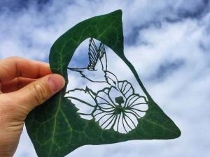 Рисуване върху листо - талантът на един творец в СНИМКИ