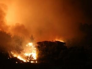 Продължават опустошителните пожари в Гърция, огън пламна и на Закинтос