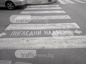"""Община Пловдив си назначава екип бояджии, ще поддържат """"зебрите"""" и стълбовете"""