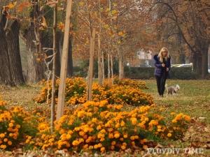 Пловдив става по-красив! Доброволци се включват в почистването на алеята край Марица