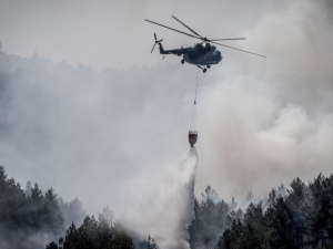 Пожарът в Кресна е изпепелил 10 къщи