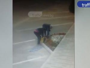 Пловдивчанки опоскаха алея до Гребната, пъхат цветя в торби и бягат ВИДЕО