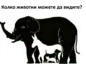 Предизвикай себе си: Колко животни виждаш на картинката?