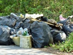 Пловдивчани запретват ръкави! Предстои голямото чистене на града