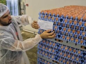 Лидл връща парите на клиентите, купили яйца с фипронил