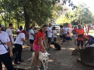Олимпийски легенди, активни пловдивчани и кучетата им спортуваха заедно днес в Пловдив