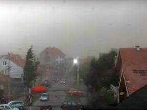 Мощна буря удари Сърбия, ураганен вятър изкорени дървета ВИДЕО