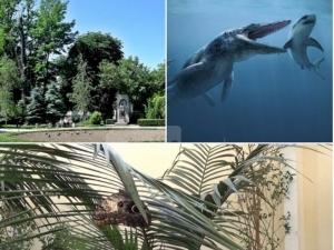 С усещане за тропика: Морски чудовища, джунгла и разходка в ботаническа градина под тепетата ВИДЕО