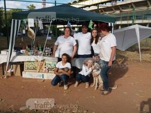 Базар в Пловдив събира средства за кучета жертви на насилие СНИМКИ