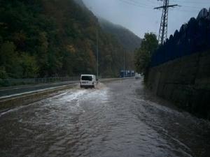 5 правила за шофиране в дъждовно време