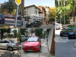 Изцепки на колела: Седем пловдивски шофьори газят закони, градинки и тротоари СНИМКИ