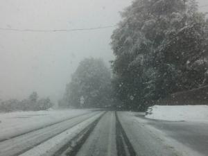 33 сантиметра сняг натрупа, валежите продължават