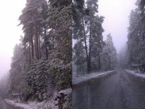 Хижа Здравец е готова за сезона! Бяла пелена покри склоновете около Бяла черква СНИМКИ