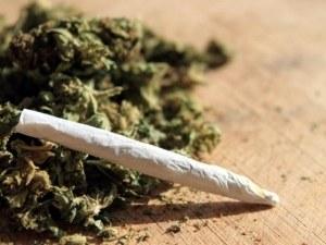 Дилъри продавали марихуана в магазин в Пловдивско, отнесоха условни присъди