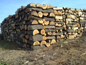 Лоши новини: Дървата за огрев поскъпват, доставките се бавят