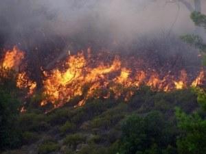 Огненият ад в Испания и Португалия взе жертви