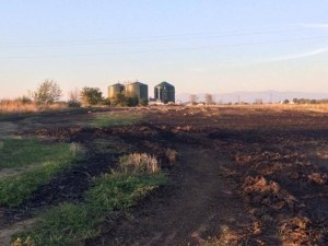 Ловци от Пловдивско също скочиха срещу централа за биогаз, била изгонила дивеча