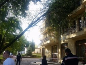 Голям клон  падна върху хотел в Хисаря