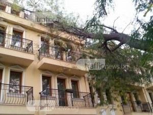 Управителката на хотела в Хисаря: Няма паника, няма евакуация