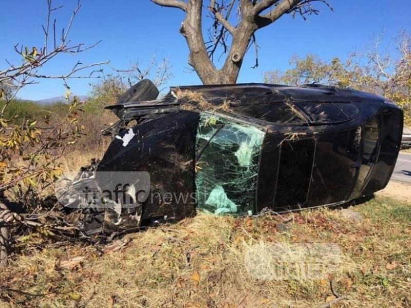 Коне предизвикаха зловеща катастрофа на пътя София - Бургас СНИМКИ