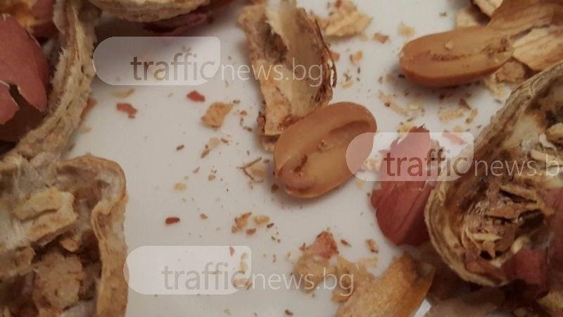 Пловдивчанин: Голям хранителен магазин ни пробутва червясали ядки СНИМКА и ВИДЕО