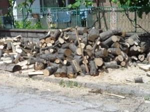 Нагла измама в пловдивско село: Мъж обеща да купи дърва на две баби, а отмъкна парите