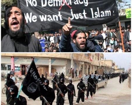 Ясновидка: Западна Европа ще е ислямска земя след 10 години
