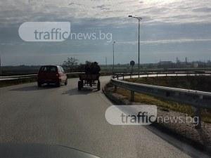 Каруца се състезава с бързите коли на оживен пътен възел СНИМКИ
